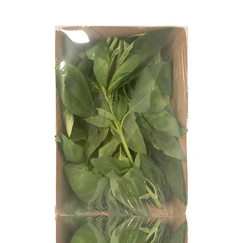 Albahaca  (40 g)