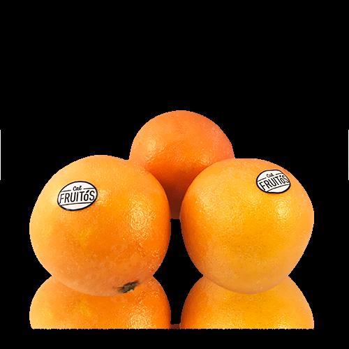 Naranja Promoción Cal Fruitós