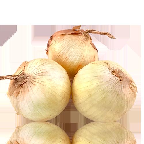 Cebolla Seca Granel