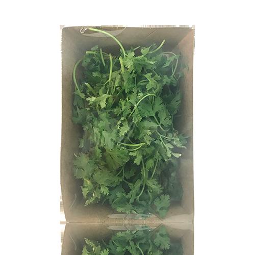 Coriandre (40 g)