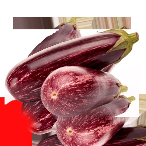 Albergínia Ratllada