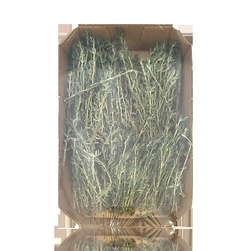 Farigola Safata 40 g