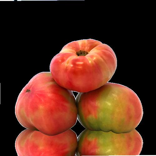 Tomàquet Rosa de Barbastro