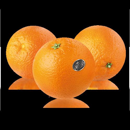 Naranja Extra Cal Fruitós