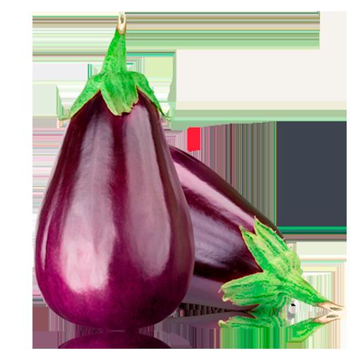 Albergínia Bio