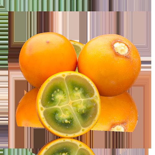 Naranjilla (Lulo)