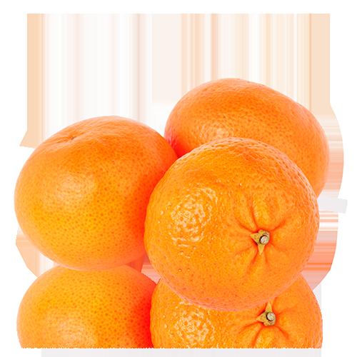 Clementina Orri Cal Fruitós