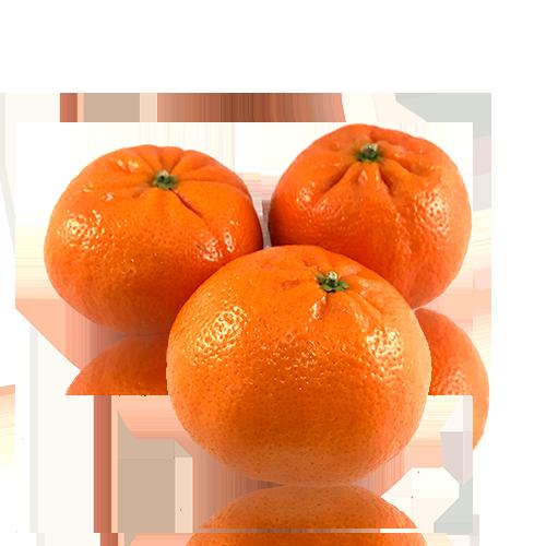 Clementina Cal Fruitós