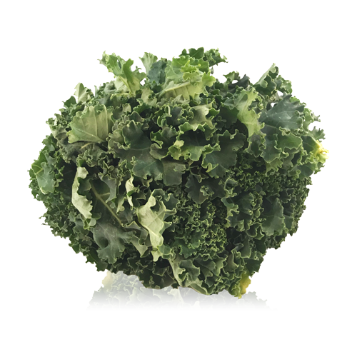 Col Kale en Bossa Bio