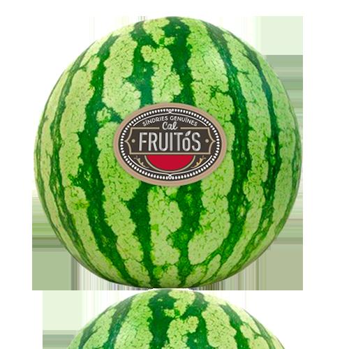 Síndria Ratllada Cal Fruitós