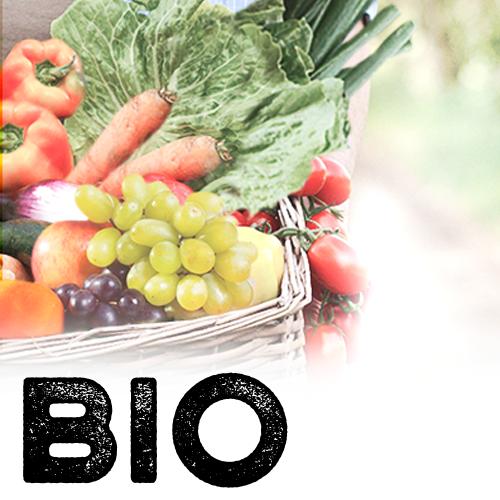 2. Caja Bio