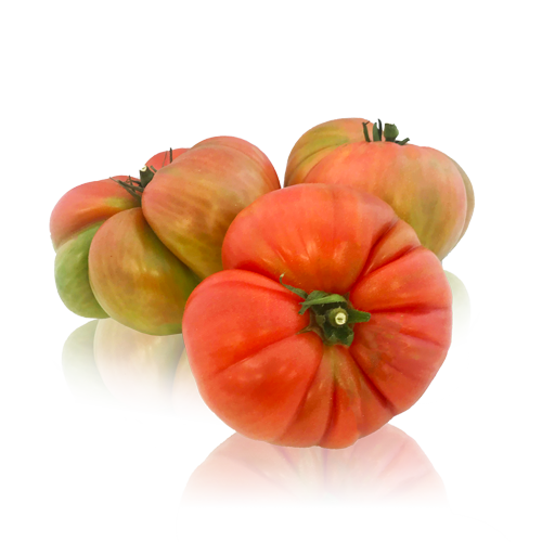 Tomàquet Rosa
