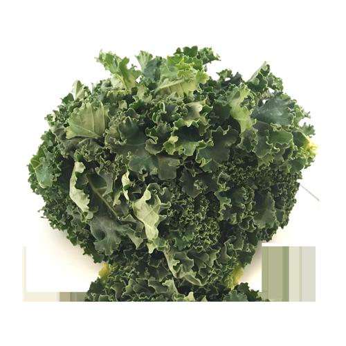 Col Kale Bossa