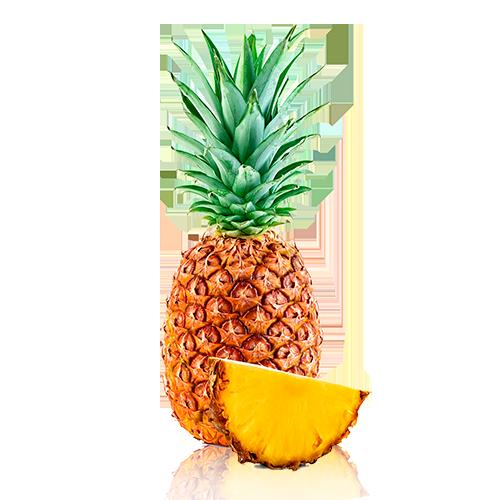 Piña Bio