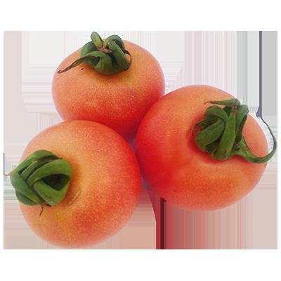 Tomàquet de penjar Granel Extra Cal Fruitós
