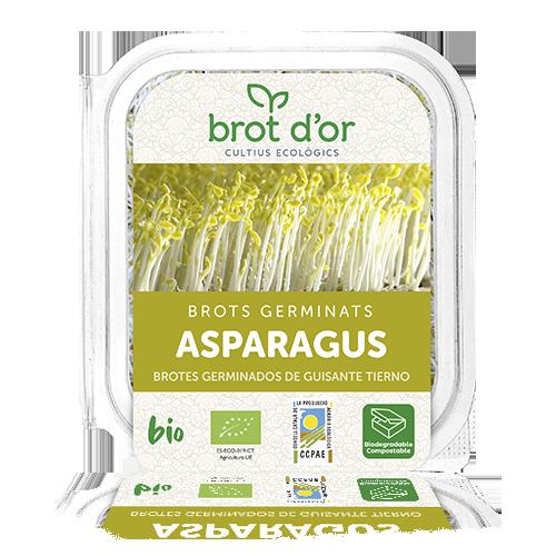 Germinado de Asparagus BIO (50 g)