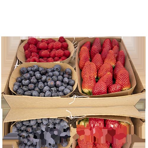 Caixa de Fruits vermells especial escoles