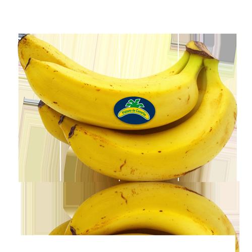 Plàtan Canari Extra (consum immediat)